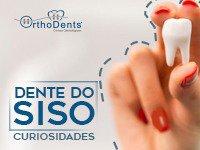 5 Curiosidades sobre os Dentes do Siso