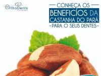 Descubra os benefícios da Castanha do Pará para os dentes